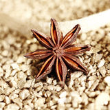 Decorative star anise Royalty Free Stock Photos