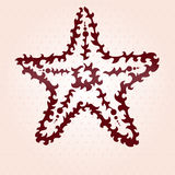 Decorative starfish Royalty Free Stock Images