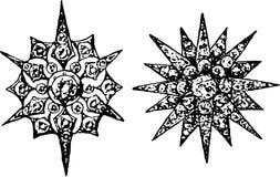 Decorative stars Stock Image