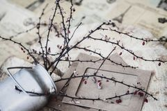 Decorative still life, style of ikebana, lying metal jug with dry thorny branches, red berries, paper frames on wooden royalty free stock photos