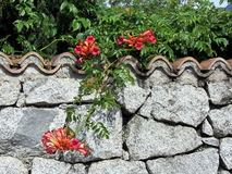 Decorative stone wall with colorful flowers.  Stock Photo