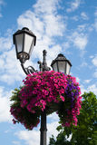 Decorative street light Stock Image