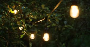 Decorative string lights hanging for outdoor party stock video