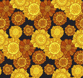 Decorative stylized marigold flower Royalty Free Stock Images
