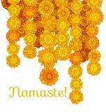 Decorative stylized marigold flower Stock Photos