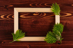 Decorative summer background of blank wood frame and young green leaves on vintage brown wooden board. Royalty Free Stock Photography