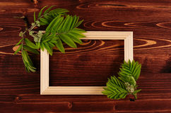 Decorative summer background of blank wood frame and young green leaves on vintage brown wooden board. Copy space, top view. Stock Photo