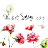 Decorative summer flowers with title the best spring ever. Watercolor illustration Royalty Free Stock Photography