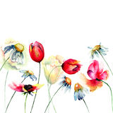 Decorative summer flowers Stock Photography