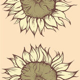 Decorative sunflower Stock Image