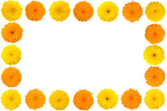 Decorative sunflower frame Stock Photo