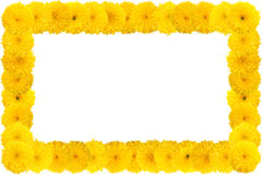 Decorative sunflower frame Royalty Free Stock Image