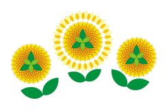 Decorative sunflowers Royalty Free Stock Image