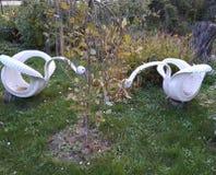 Decorative Swans royalty free stock image