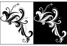 Decorative swirls Royalty Free Stock Images