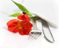 Decorative table setting with flower. Decorative table setting with red orchid flower Royalty Free Stock Photography