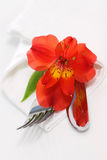 Decorative table setting with red flower. Decorative table setting with red orchid flower Stock Photos