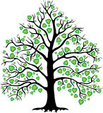 Decorative tree Stock Photo