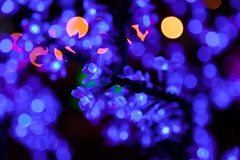 Decorative electrics tree bulbs blue flowers shines at night. Decorative tree of blue electrics small bulbs flowers shines on New Year Eve at municipality royalty free stock photo