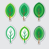 Decorative Tree. With Leaves  in Vector Stock Photography