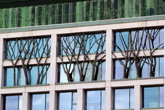 Decorative trees in windows of a building, Madrid, Spain Stock Photos