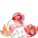 Decorative Tulips flowers Royalty Free Stock Photography
