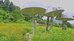 Decorative Umbrellas Like Mushrooms on Green Grass Meadow. Close panorama of large decorative white umbrellas like mushrooms on green grass meadow on lake bank stock video