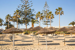 Decorative umbrellas made of palm branches on the background of the beach Royalty Free Stock Photos
