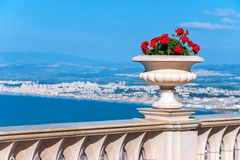 Decorative vase with flowers on the waterfront. The observation deck on Mount Carmel in Haifa Stock Photography