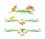 Decorative vector ornament Royalty Free Stock Photos