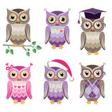 Decorative vector owls Royalty Free Stock Photography