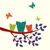 Decorative Vector Owls Stock Photo