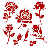 Decorative vector rose and bud silhouettes. Floral branches set Stock Image