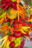 Decorative vegetables Stock Photography