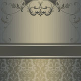 Decorative vintage background with floral patterns. Vintage background with decorative floral patterns and border Royalty Free Stock Photography