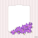 Decorative vintage card with lilac clematis, vector. Romantic figured card in vintage style, with flowers clematis . Lilac flowers. Vector illustration Stock Photography