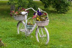 Decorative Vintage Model Old Bicycle Equipped Basket Flowers. Garden Stock Photos