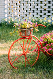 Decorative Vintage Model Old Bicycle Equipped Basket Flowers Garden. Toned Photo. Stock Photos