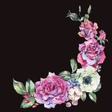 Decorative vintage watercolor pink roses, Nature floral wreath stock illustration