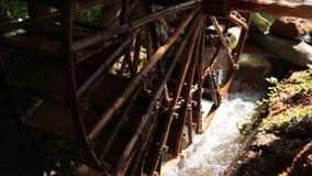 Decorative water wheel in the garden. stock video footage