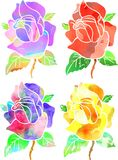 Decorative Watercolor Ink Roses Stock Photo