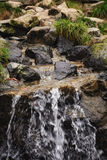 Decorative waterfall. Stock Images