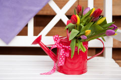 Decorative watering can with flowers outdoor Stock Images