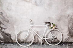 Decorative white bicycle with basket of pink flowers Stock Images