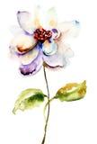 Decorative white flower Royalty Free Stock Photo