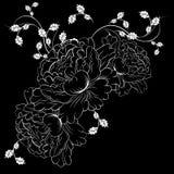 Decorative white flowers on black background Royalty Free Stock Photo