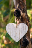 Decorative White heart hanging on the tree in the garden. Declaration of love on Valentine`s Day, Royalty Free Stock Image