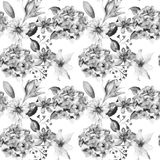 Decorative wild flowers. Floral seamless pattern with flowers, watercolour illustration Stock Image