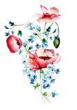Decorative wild flowers Stock Image