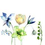 Decorative wild flowers Stock Photography